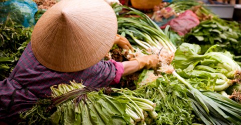 Tracking Anti-Oxidants in Rural China