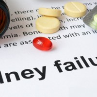 Study Looks at Chronic Kidney Disease (CKD) & Diet