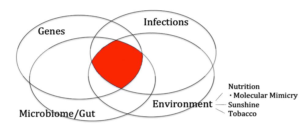 Autoimmune Disease: Genes, Infection, Environment & Gut