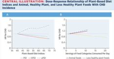 The Quality of Your Plant-Based Diet Matters for Heart Disease Risk