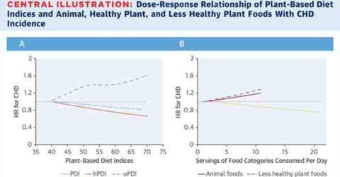 La calidad de tu alimentación basada en plantas importa para el riesgo de enfermedad cardíaca