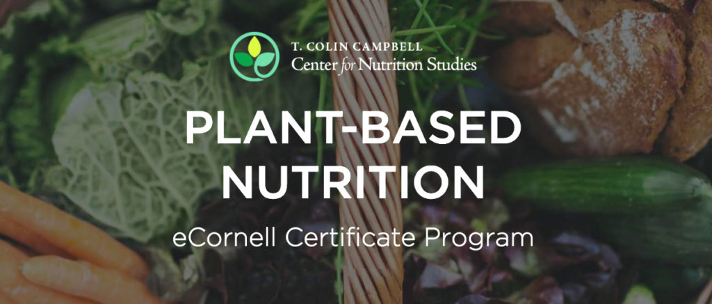 The Value of the Plant-Based Nutrition Certificate: A Graduate\'s ...
