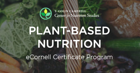 Plant-Based Nutrition Certificate Review - Should You Take It?