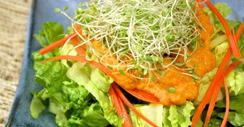 Aderezo de jengibre y zanahoria