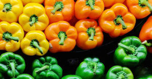 Whole Food, Plant-Based Diet Guide