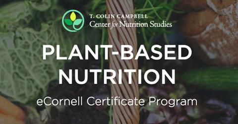 El valor del Certificado de Nutrición Basada en Plantas: análisis de un egresado