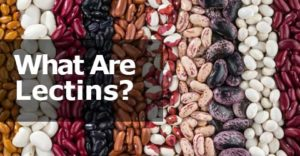 What Are Lectins? A Look at This Controversial Protein