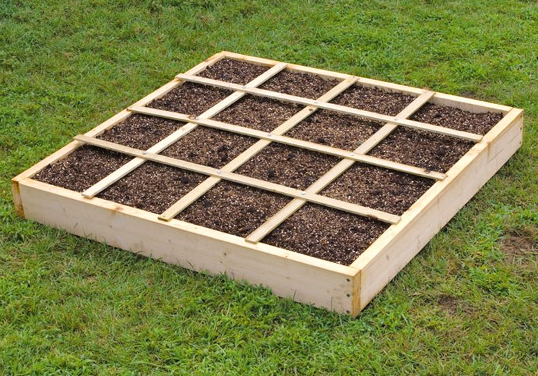 Square Foot Gardening Method - Growing Food at Home and Beyond
