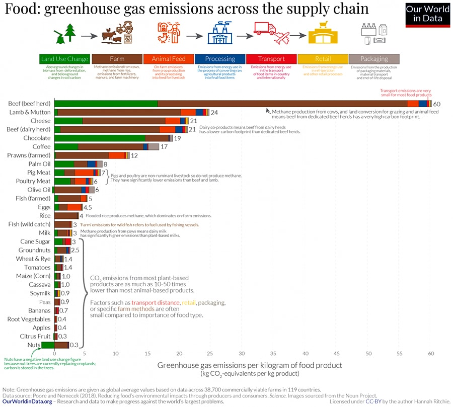 Diet Choice or Food Miles? Where Can We Reduce Our Environmental Footprint?