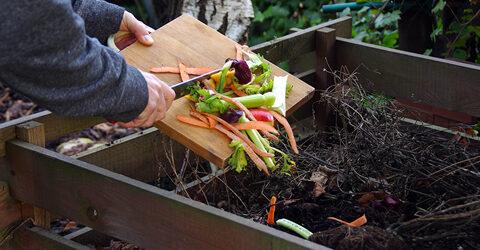 Compostaje casero simplificado - Guía de compostaje con consejos para principiantes