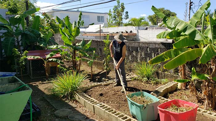 CNS Microgrant Recipient Casa Vegana is Making an Impact in Puerto Rico