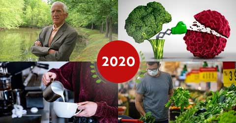 Top 10 Plant-Based News Stories and Articles of 2020