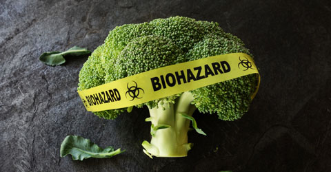 Asking the Right Questions About GMOs: Are GMOs Safe?