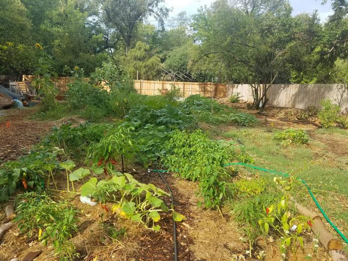 Vecino Valley Garden