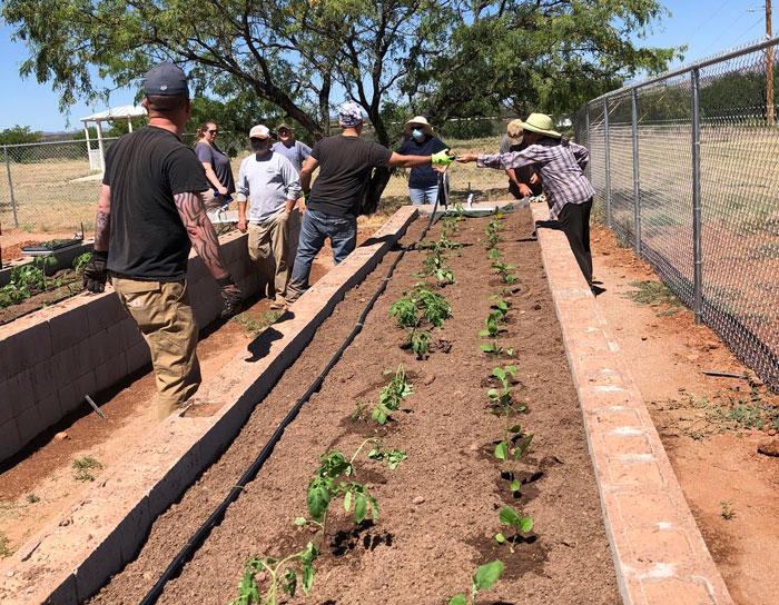 Arizona Community Garden