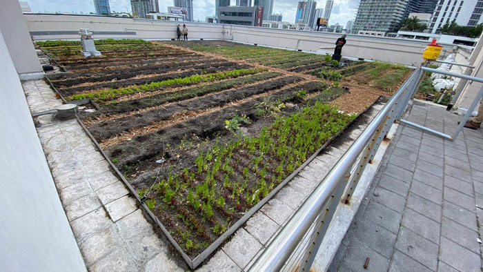 Urban Greenworks