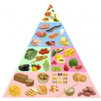 Solving Food Pyramid Mysteries