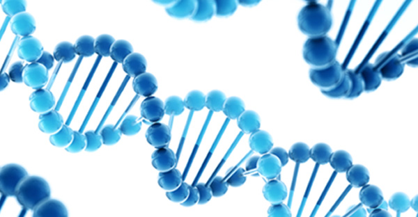 gene systhesis Gene synthesis market 2017 global industry research report is a professional and in-depth study on the current state of the gene synthesis.
