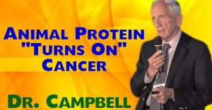 Animal Protein 'Turns On' Cancer Genes - T. Colin Campbell PhD