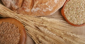 The Great Grain Debate