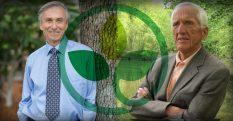 r. T. Colin Campbell interviews Dr. John McDougall
