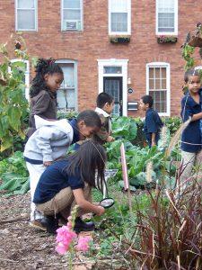 Students in the school garden