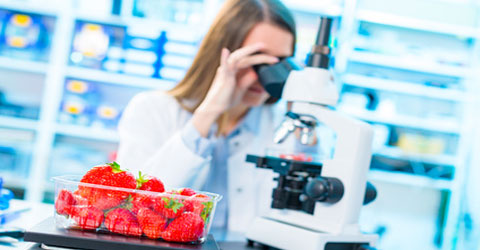 Scientific Reductionism Distracts from Whole Food, Plant-Based Message